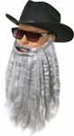 Long Grey ZZ Top Style Beard