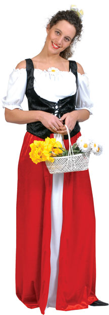 Adult Bavarian Dress Costume