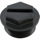 Pentair Cartridge Filter Drain Plug