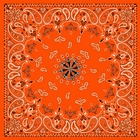 Antique Style Orange Paisley Bandanas