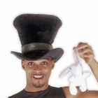 Adult Magician Hats