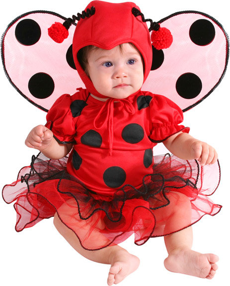 Baby Beautiful Lady Bug Costume