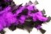 Purple/Black Chandelle Feather Boa