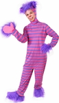 Adult Alice in Wonderland Cheshire Cat Costume