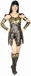 Adult Xena Warrior Princess Costume