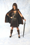 Deluxe Warrior Princess Costume
