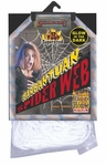 Glow-in-the-Dark Halloween Spider Web