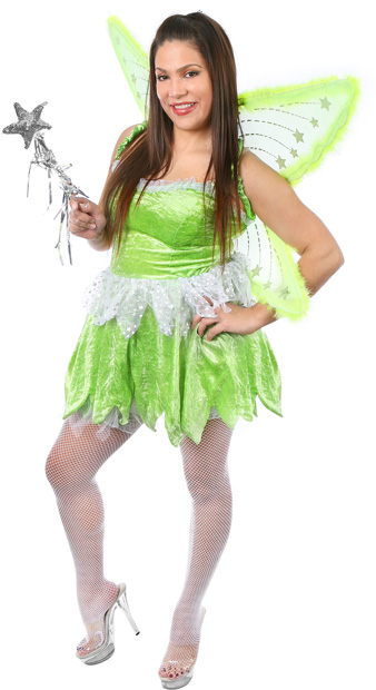 Plus Size Sexy Pixie Fairy Costume