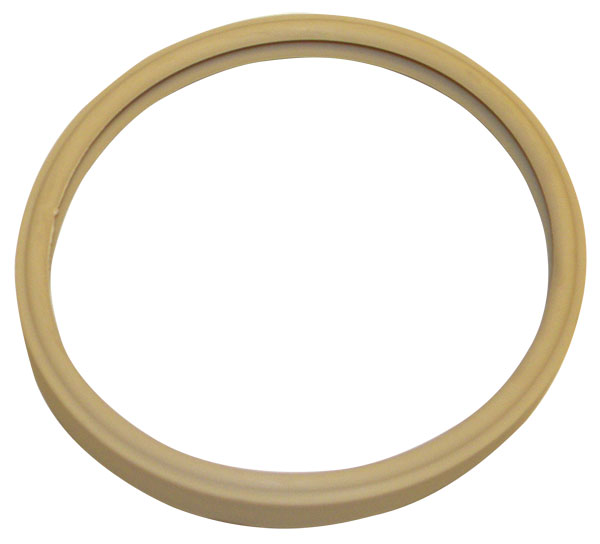 Pentair Pool Light Lens Gasket