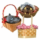 Little Red Riding Hood Baskets