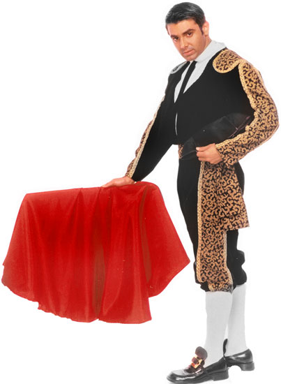 Bull Fighter Costume