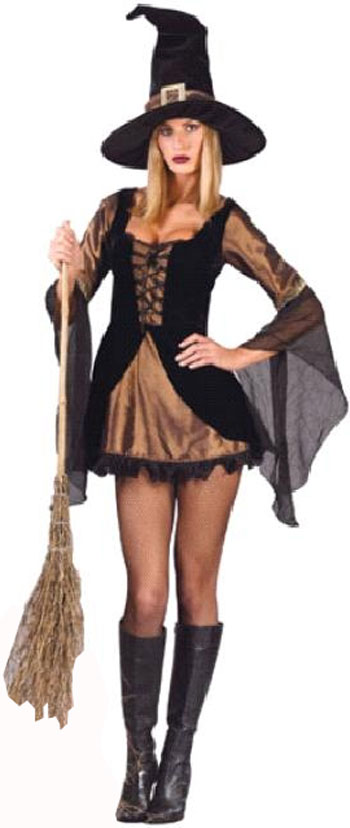 Sexy Velour Witch Costume