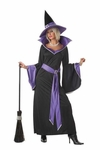 Woman's Glamour Witch Costume