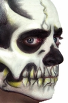 Skull Face Makeup Kit