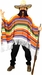 Adult Mexican Serape Costume
