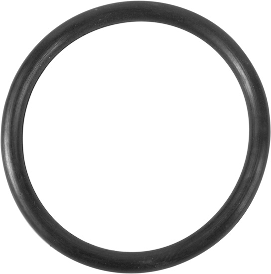Summer Escapes Pool Filter Vent Screw O-Ring Part