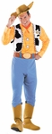 Deluxe Toy Story 3 Woody Costume