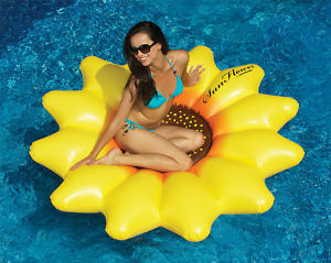 Sunflower Island Float