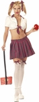 Adult Teachers Pet Sexy School Girl Costume