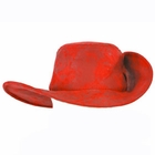 Child's Red Musketeer Hat