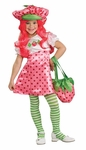 Child's Deluxe Strawberry Shortcake Costume