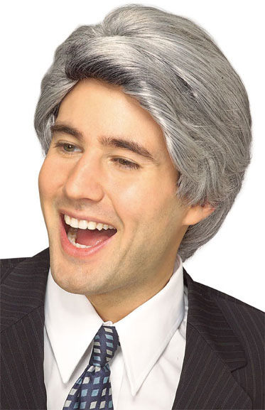 Mens Grey Politician Wig