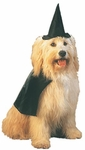 Black Witch Dog Costume
