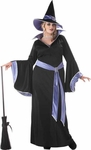 Woman's Plus Size Glamour Witch Costume