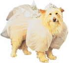 Cinderella Dog Costume