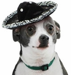 Mini Dog Mexican Sombrero Hat