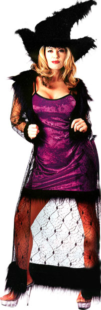 Adult Mystic Purple Witch Costume