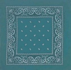 Double Sided Teal Green Paisley Bandanas