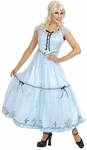 Adult Alice in Wonderland Gown