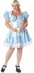 Plus Size Sexy Alice Costume