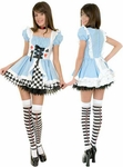 Teen Sexy Fairy Tale Alice Costume