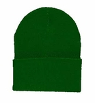 Beanie Ski Cap Hat in Dark Green