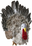 Fake Feathered Turkey Prop
