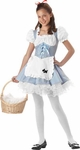 Preteen Storybook Sweetheart Costume