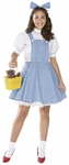 Teen Wizard of Oz Dorothy Costume