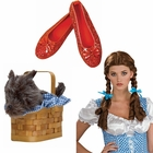 Dorothy Costume Accessories