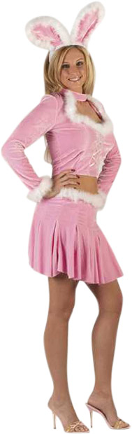 Sexy Pink Mini Dress Bunny Costume