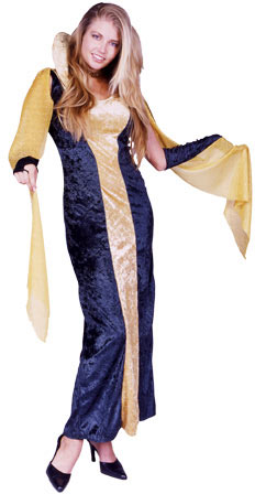 Adult Black Gothic Dress Costume