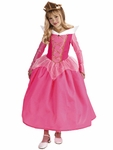 Child's Sleeping Beauty Aurora Costume