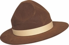 Smokey the Bear Forest Ranger Hat