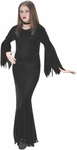 Teen Morticia Costume