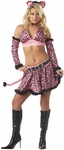 Women's Sexy Pink Kitty Costume