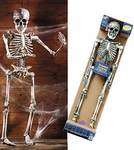 Poseable Skeleton Prop