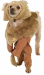 Cowardly Lion Dog Costume