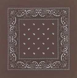 Double Sided Dark Brown Paisley Bandana