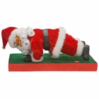 Healthy Holidays Santa Claus Christmas Decoration